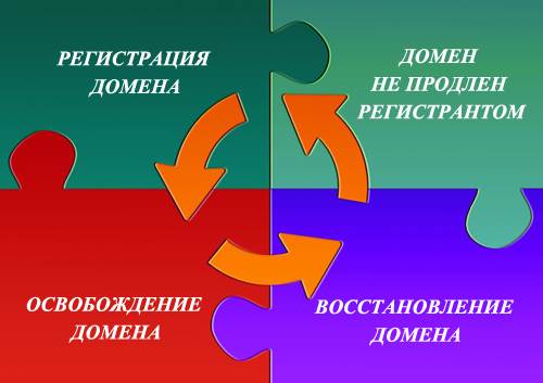 цикл жизни доменного имени